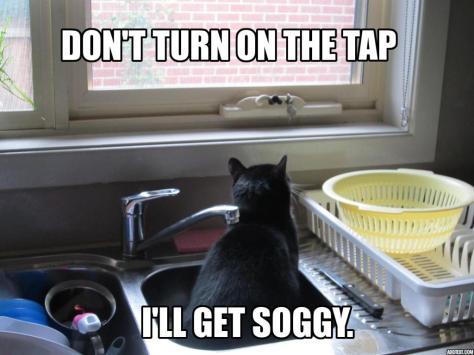 I'll Get Soggy